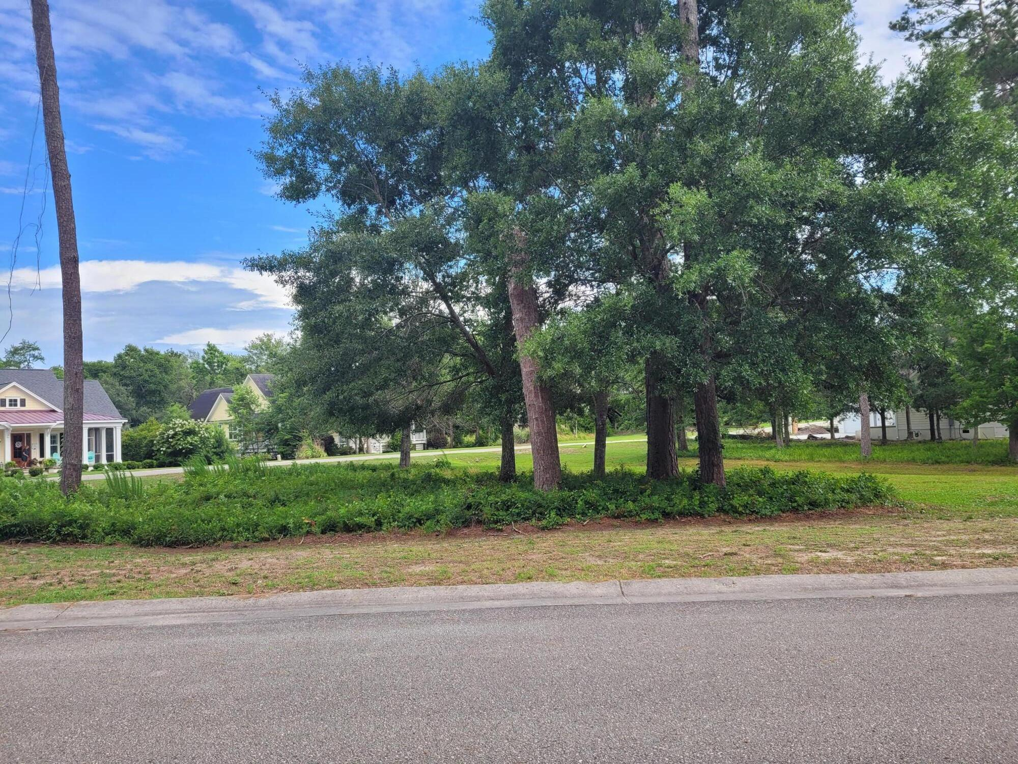5109 Hollow Tree Drive, Southport, North Carolina 28461, ,Residential land,For sale,Hollow Tree,100277376
