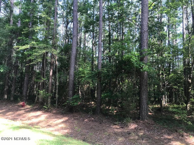 104 Spicers Creek Drive, Oriental, North Carolina 28571, ,Residential land,For sale,Spicers Creek,100277611