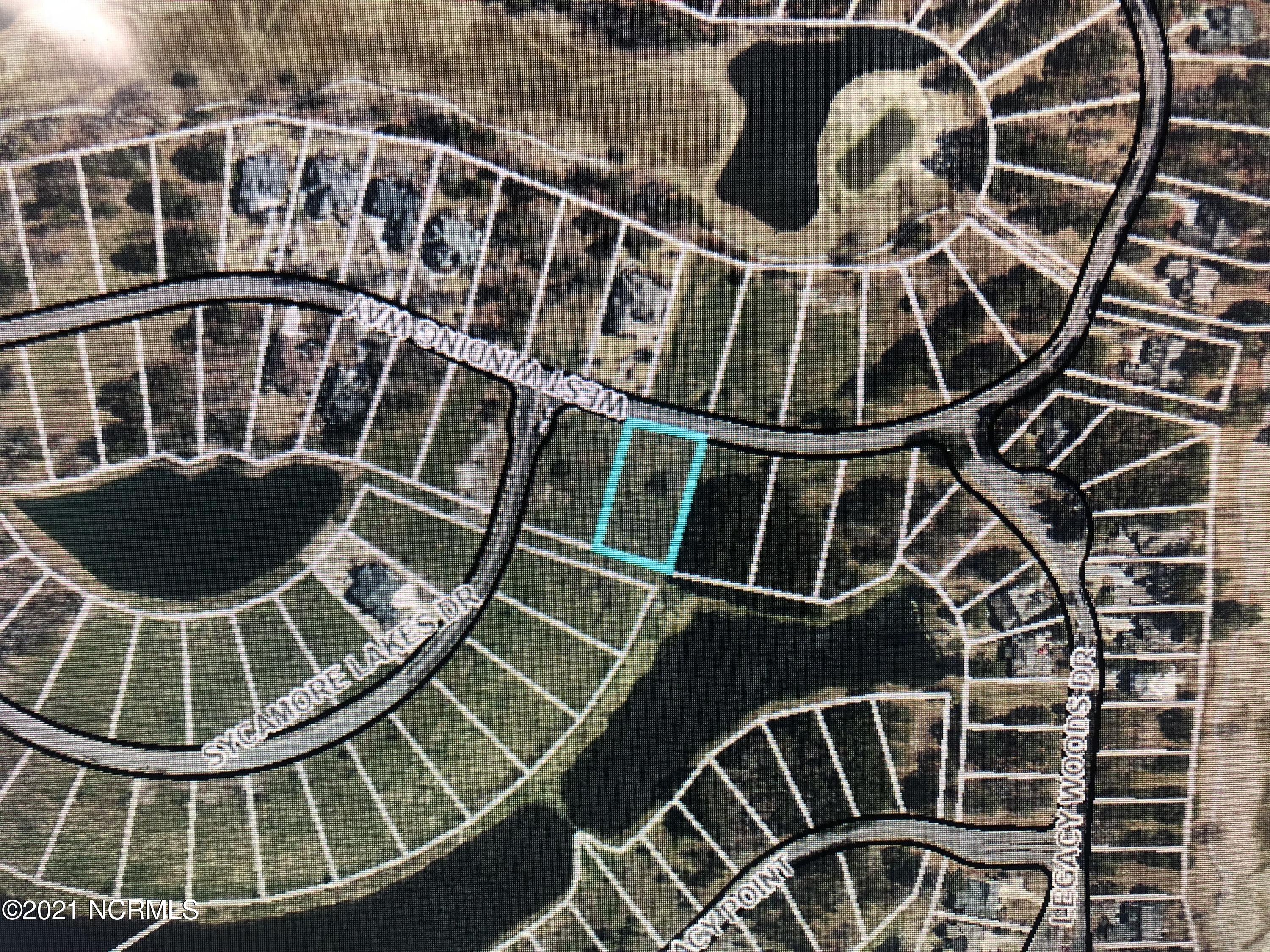 218 Winding Way, Wallace, North Carolina 28466, ,Residential land,For sale,Winding,100277429