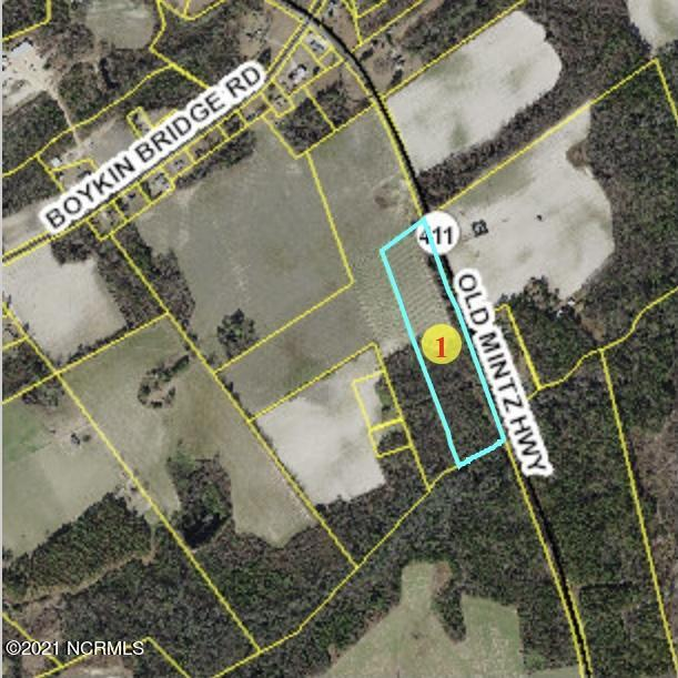 0 Old Mintz Highway, Garland, North Carolina 28441, ,Agriculture,For sale,Old Mintz,100277717