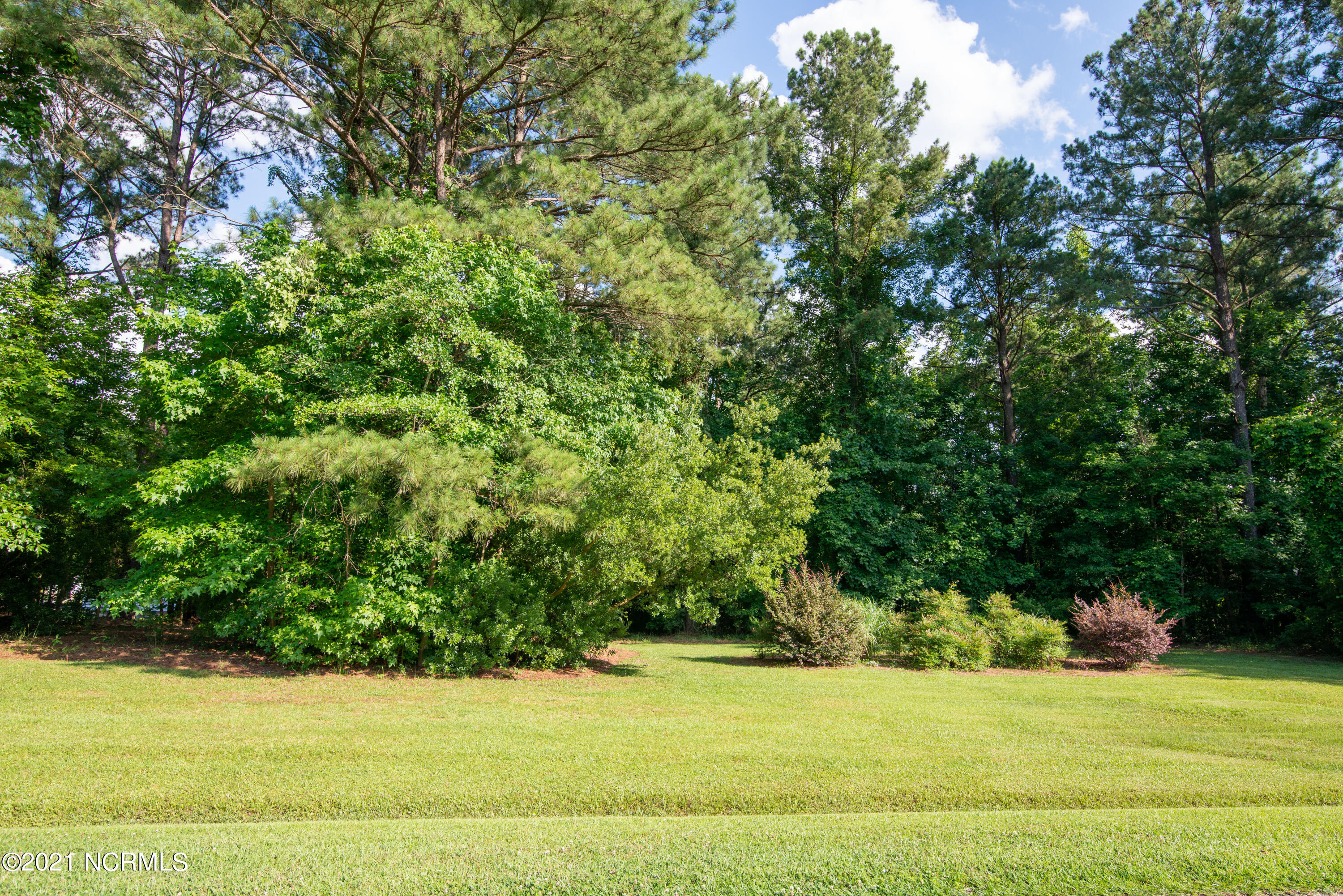 246 Country Squire Lane, Jacksonville, North Carolina 28540, ,Residential land,For sale,Country Squire,100277943
