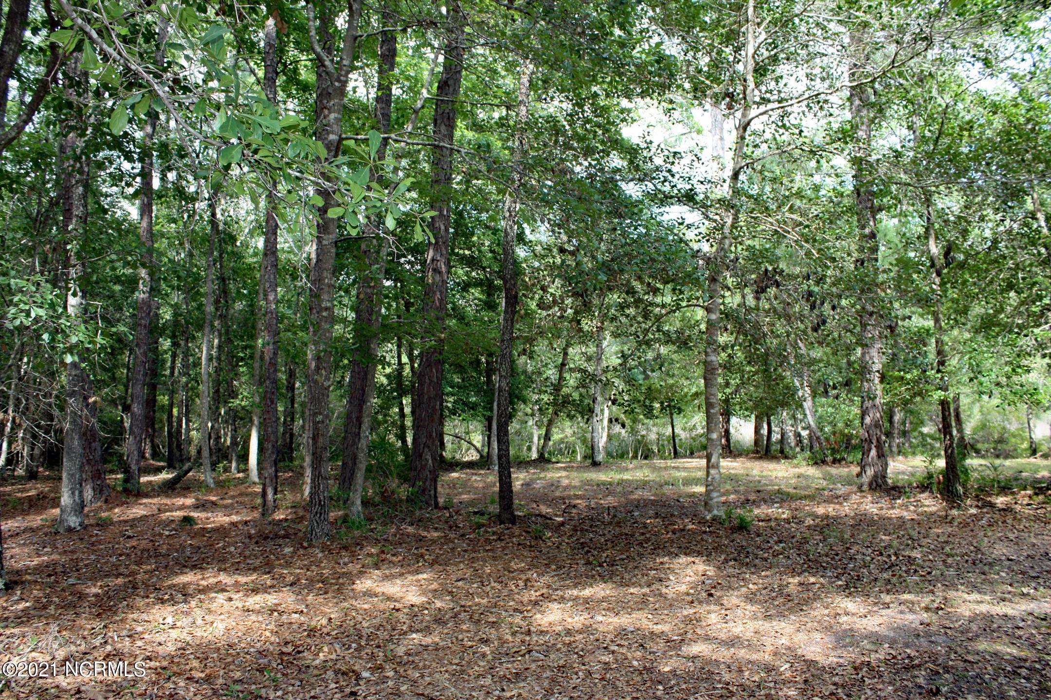716 Latrobe Lane, Shallotte, North Carolina 28470, ,Residential land,For sale,Latrobe,100277631