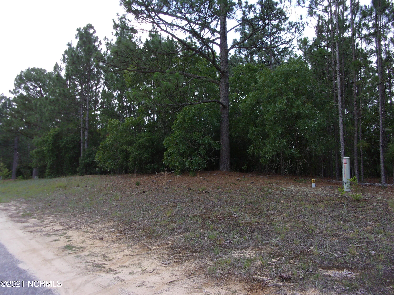 28 Old Tom Morris Road, Garland, North Carolina 28441, ,Wooded,For sale,Old Tom Morris,100278456