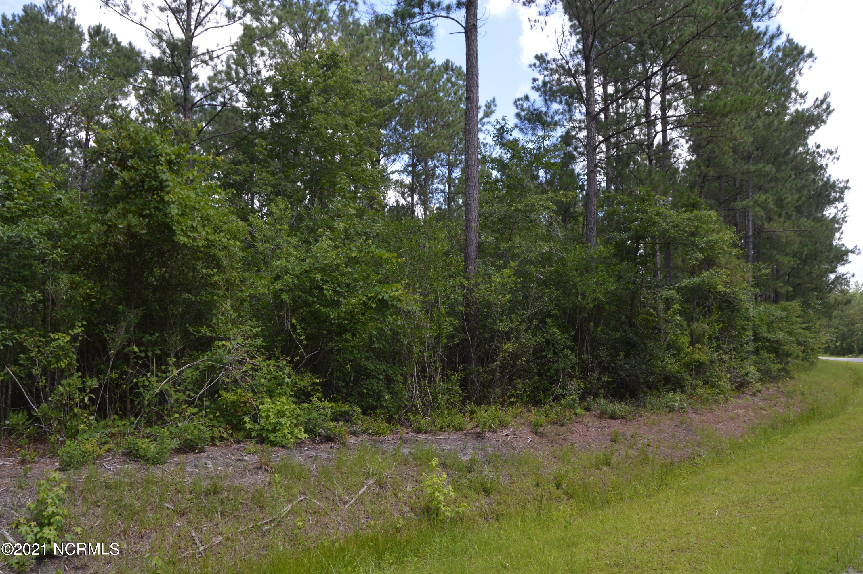 Lot C Joshua James Road, Maple Hill, North Carolina 28454, ,Wooded,For sale,Joshua James,100278439