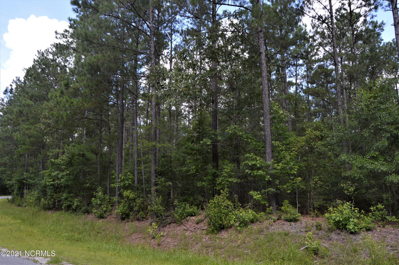 Lot B Joshua James Road, Maple Hill, North Carolina 28454, ,Wooded,For sale,Joshua James,100278438