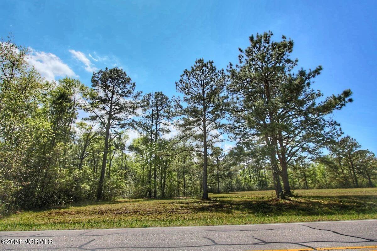 103.95 Swamp Fox Highway, Tabor City, North Carolina 28463, ,Residential land,For sale,Swamp Fox,100278788