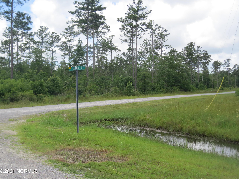 Lot 24 Equine Landing Drive, Rocky Point, North Carolina 28457, ,Residential land,For sale,Equine Landing,100278832
