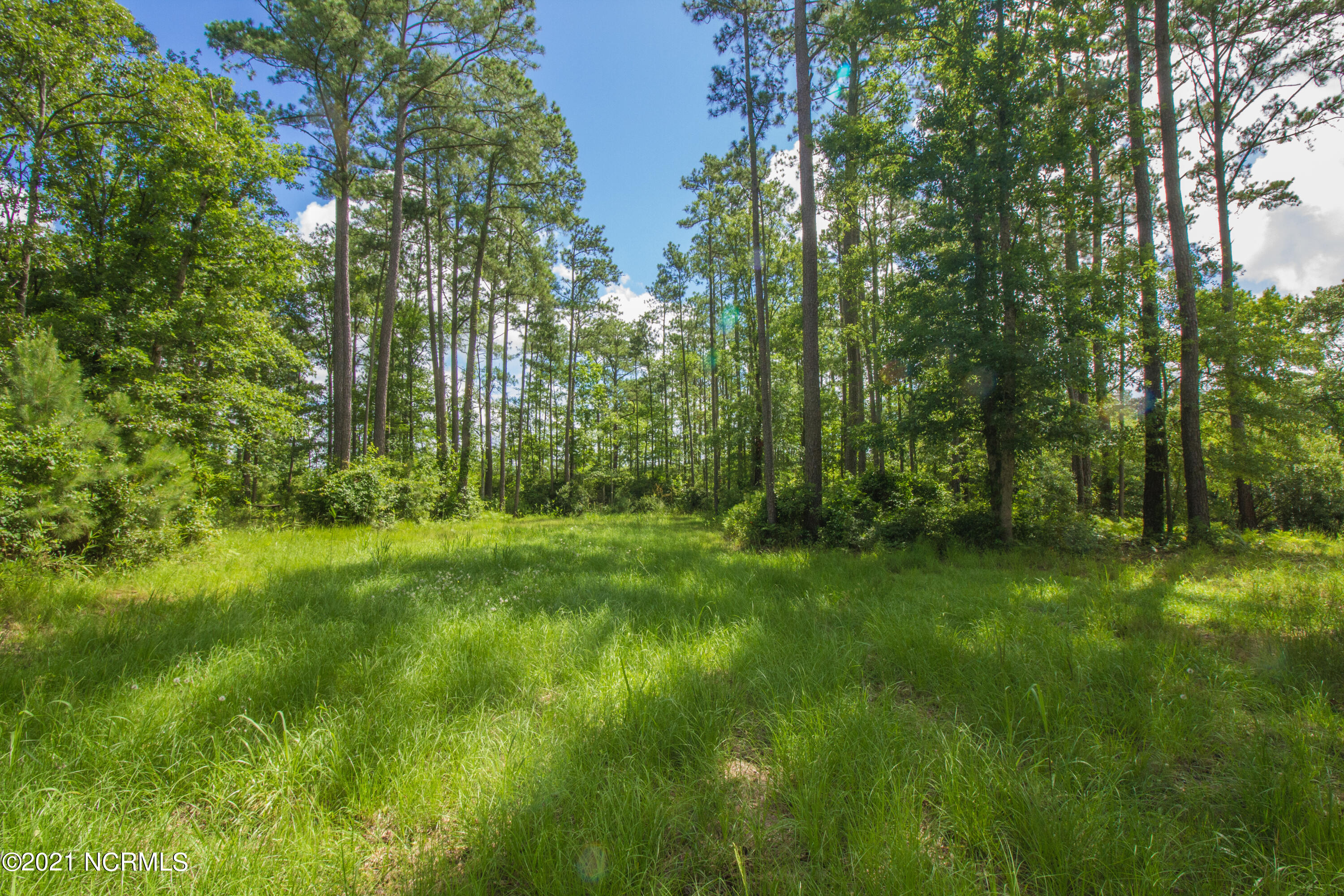 13 & 14 Northwater Court, Belhaven, North Carolina 27810, ,Residential land,For sale,Northwater,100278923