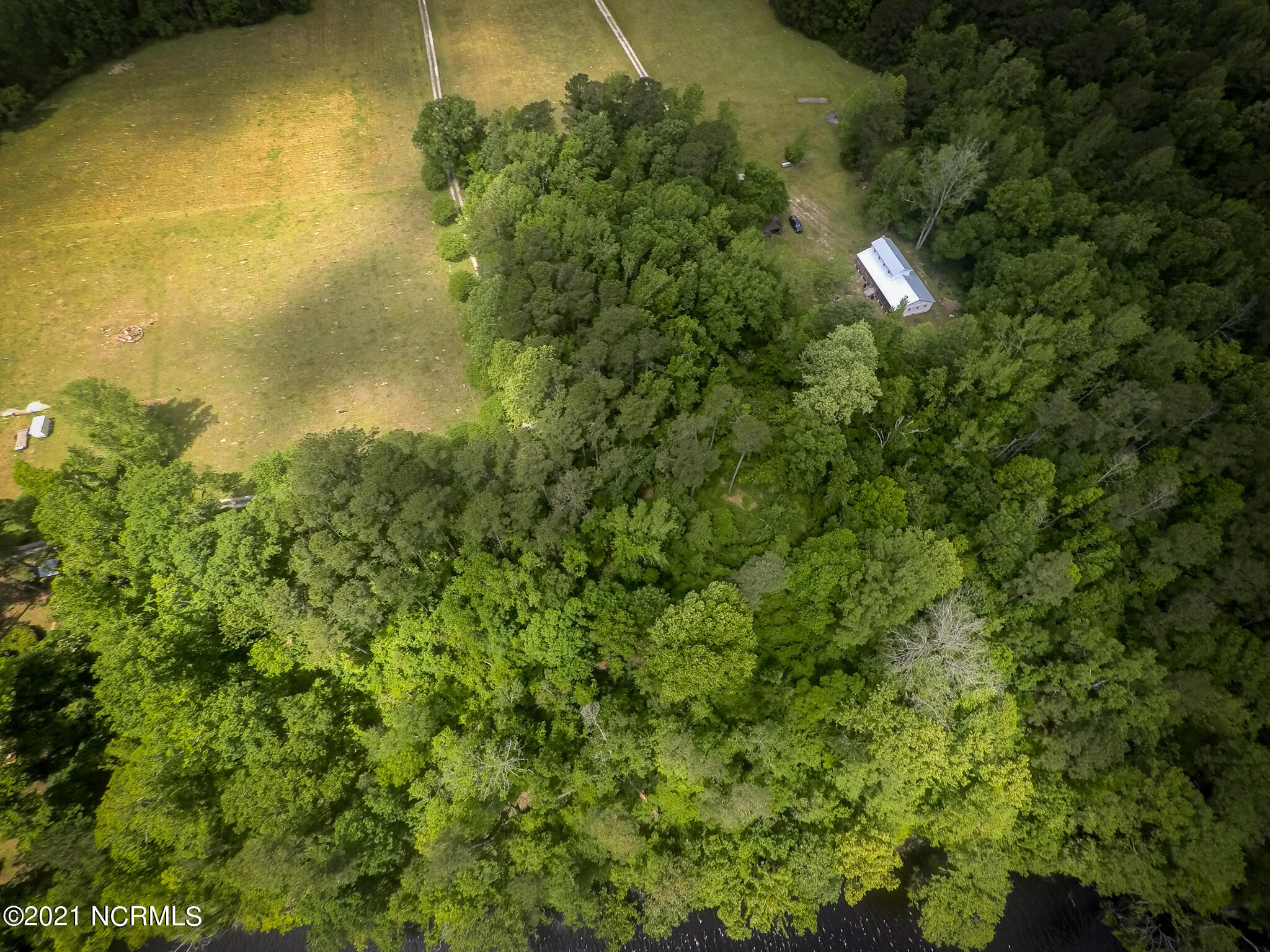 Tbd Hickory Hill Lane, Burgaw, North Carolina 28425, ,Residential land,For sale,Hickory Hill,100278959