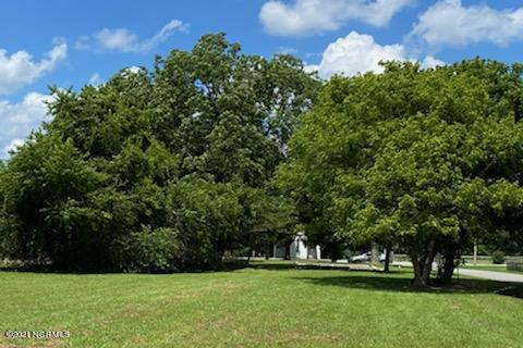 106 Pugh Street, Hamilton, North Carolina 27840, ,Residential land,For sale,Pugh,100279254