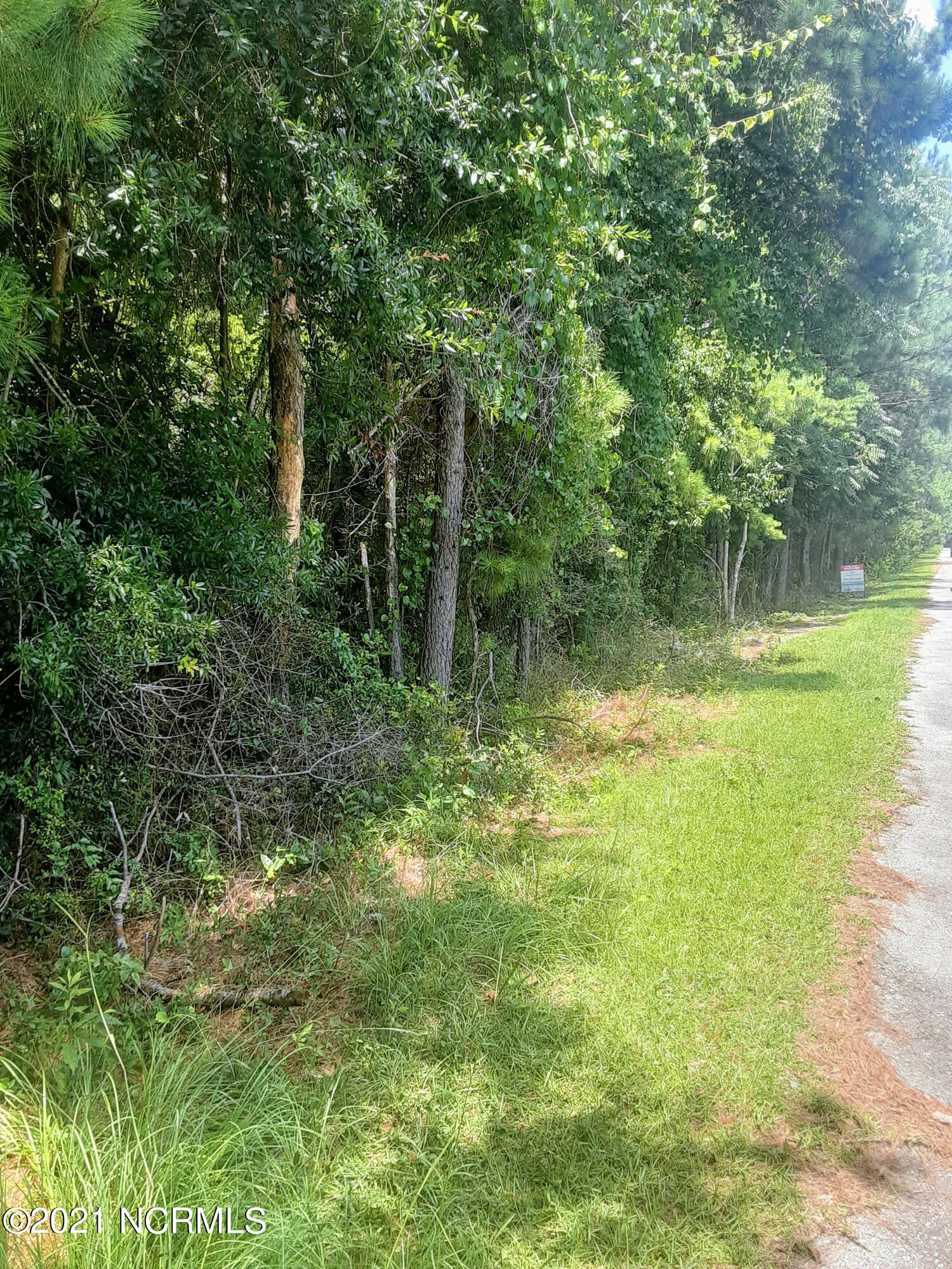 323 Cottonwood Lane, Castle Hayne, North Carolina 28429, ,Residential land,For sale,Cottonwood,100279501