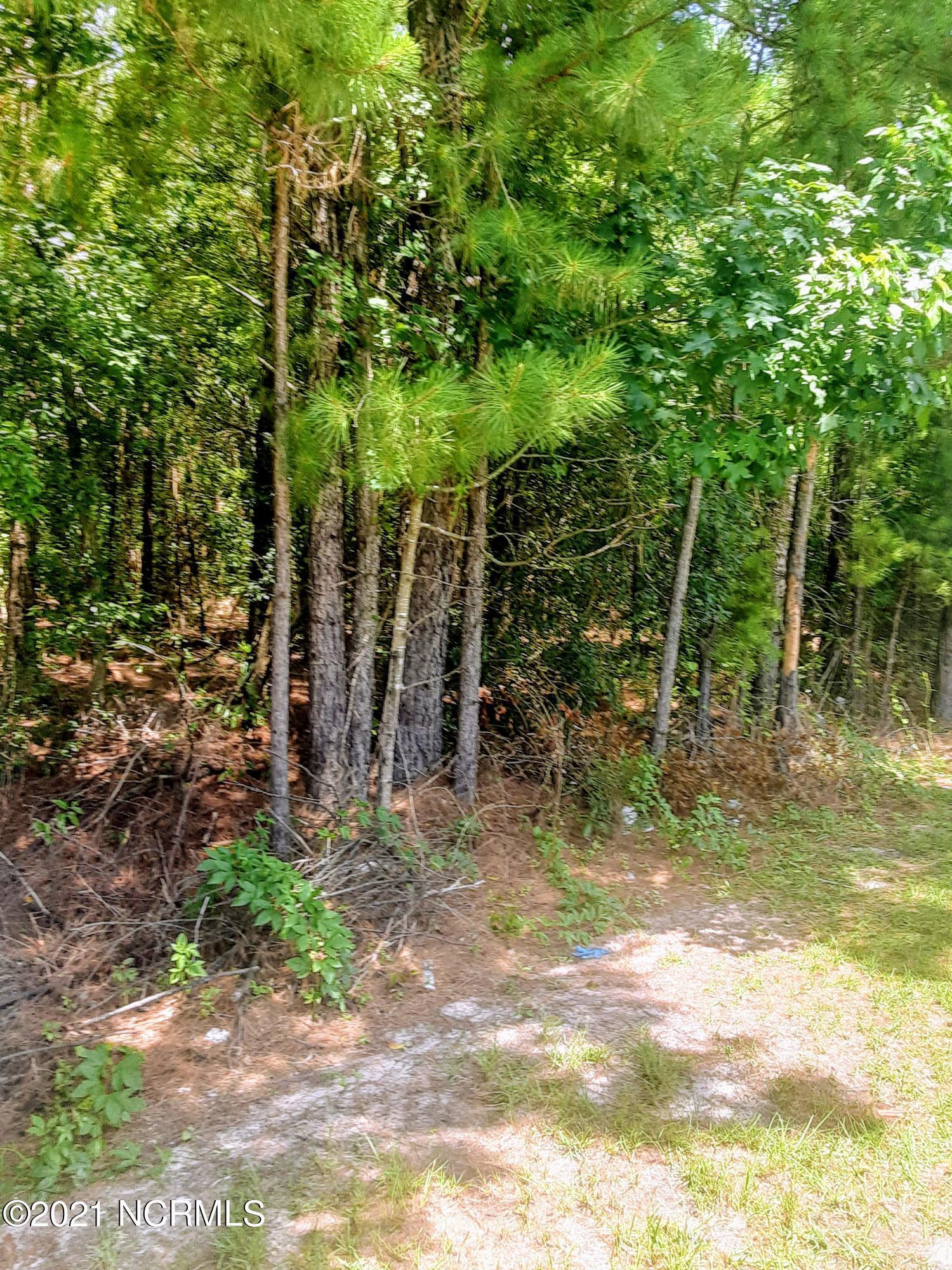 319 Cottonwood Lane, Castle Hayne, North Carolina 28429, ,Residential land,For sale,Cottonwood,100279502
