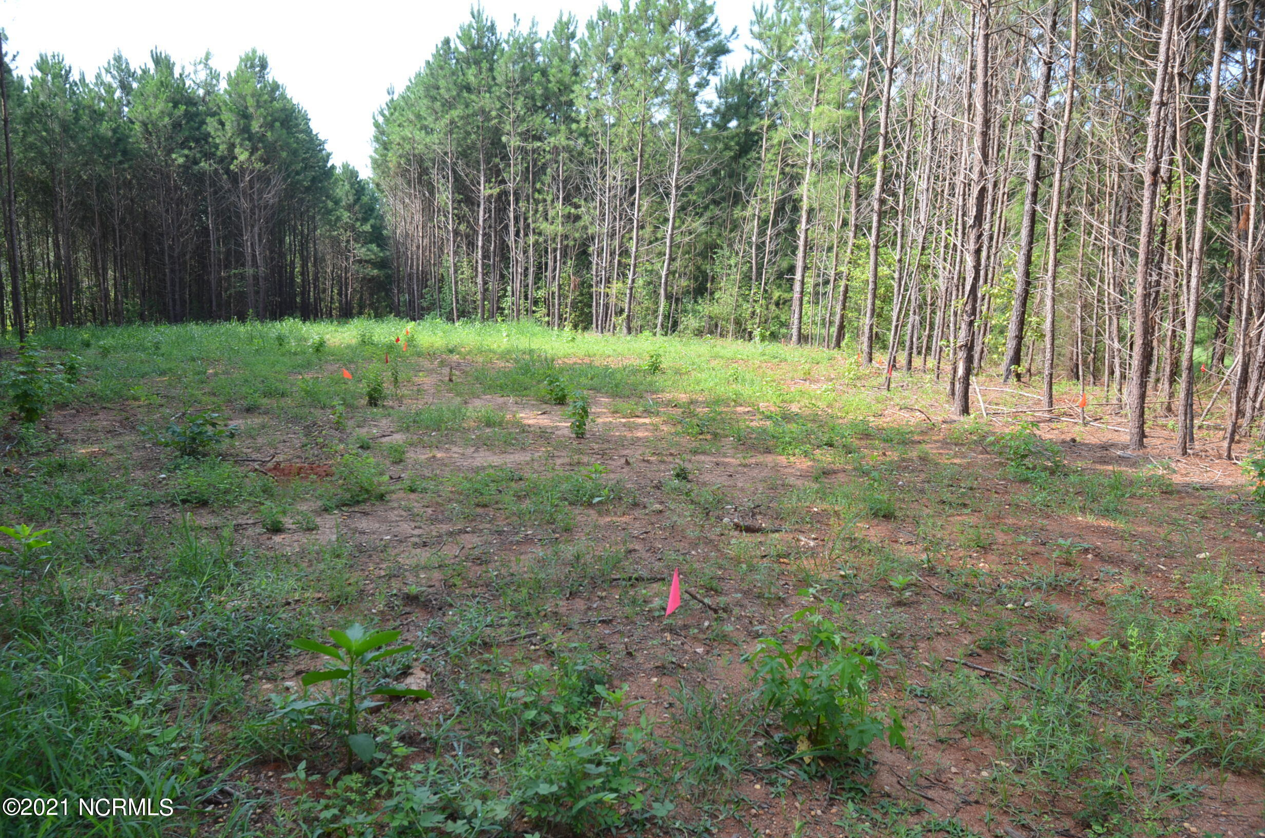 4967 Red Cabin Lane, Rocky Mount, North Carolina 27803, ,Residential land,For sale,Red Cabin,100284119