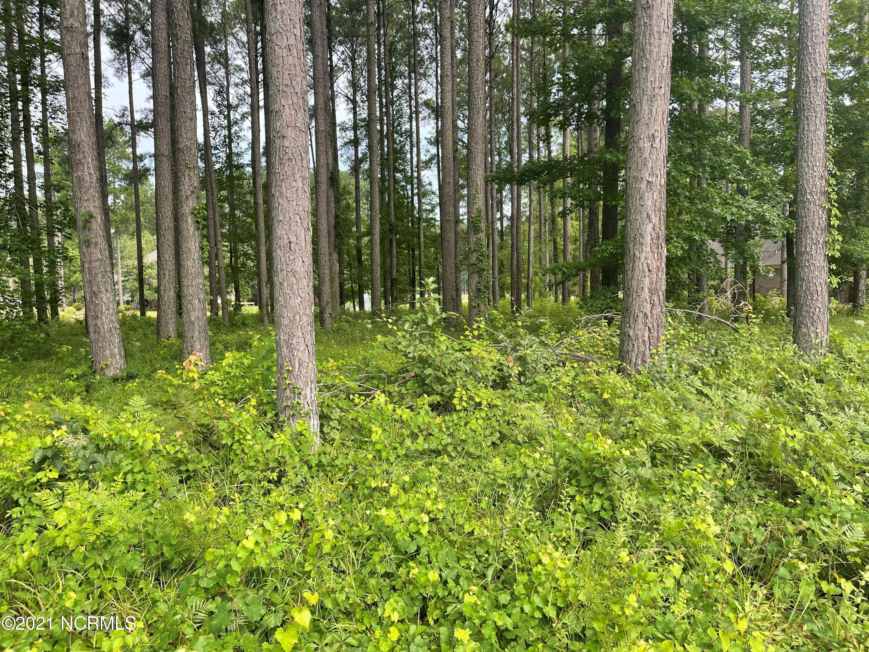 151 Cypress Landing Trail, Chocowinity, North Carolina 27817, ,Residential land,For sale,Cypress Landing Trail,100284128