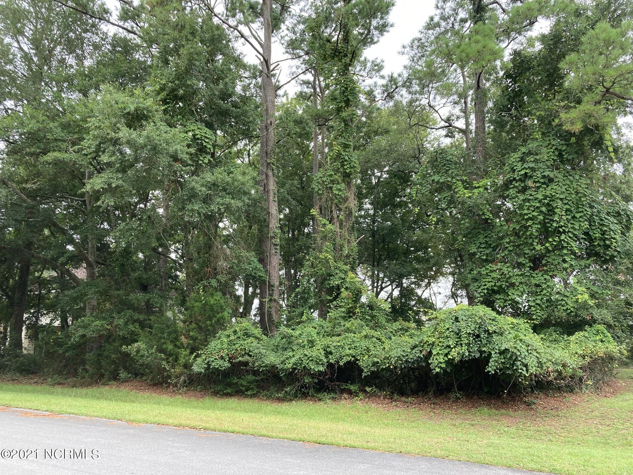 1863 Russell Hewett Road, Supply, North Carolina 28462, ,Residential land,For sale,Russell Hewett,100284655