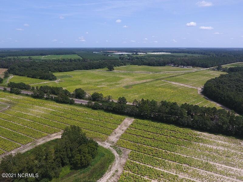 0 Off Brayboy Rd, Rowland, North Carolina 28383, ,Farm,For sale,Off Brayboy Rd,100284414