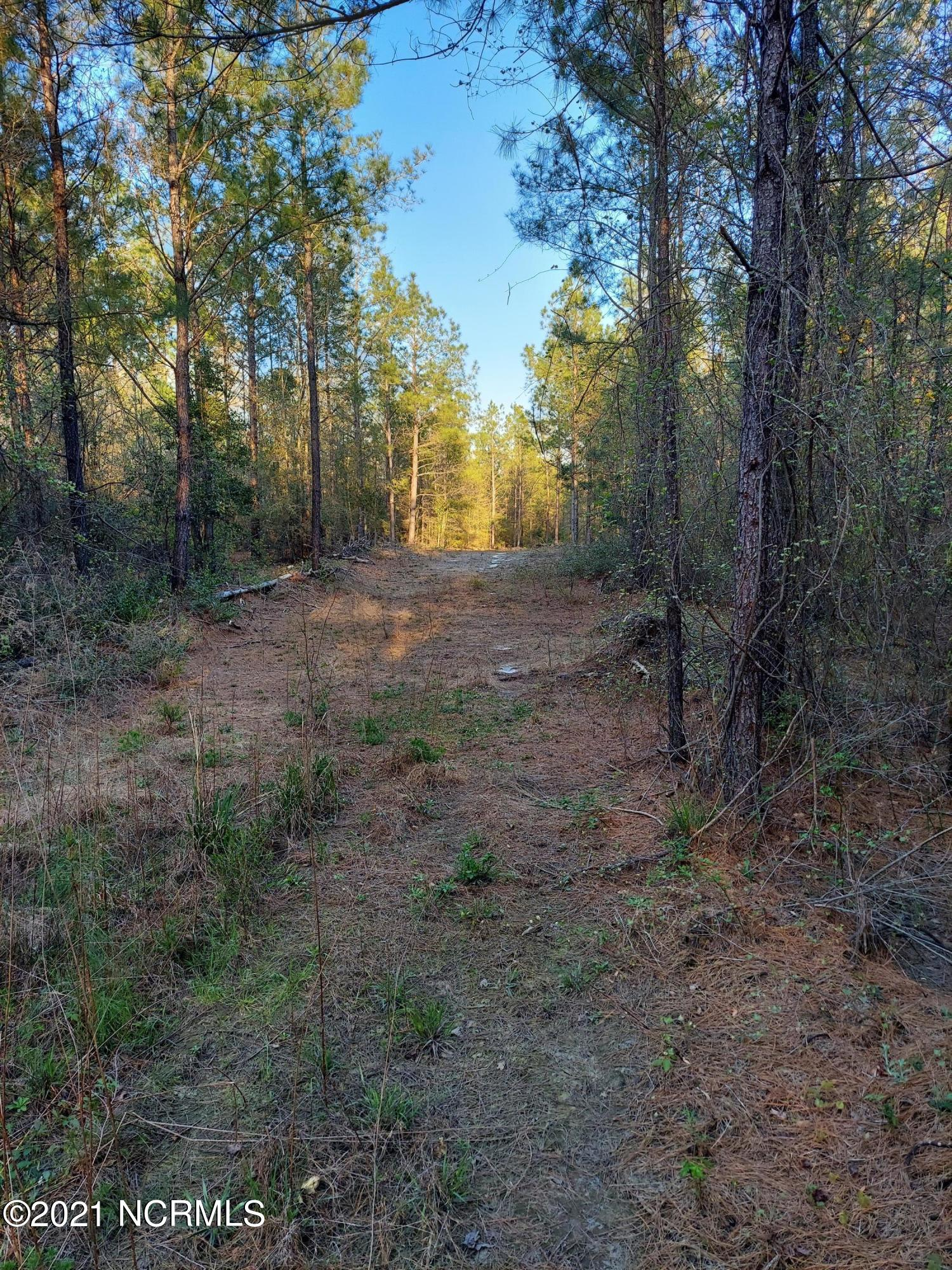 0 Battleground Road, Atkinson, North Carolina 28421, ,Undeveloped,For sale,Battleground,100284452