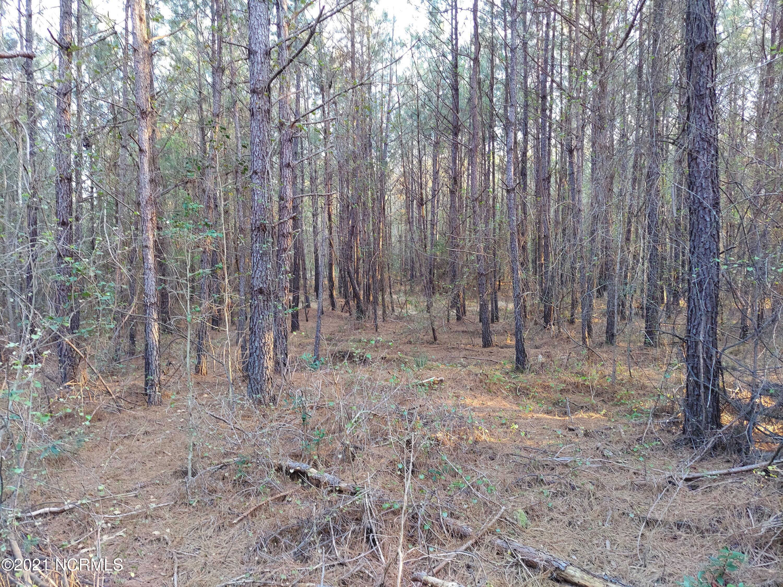 0 Battleground Road, Atkinson, North Carolina 28421, ,Undeveloped,For sale,Battleground,100284469