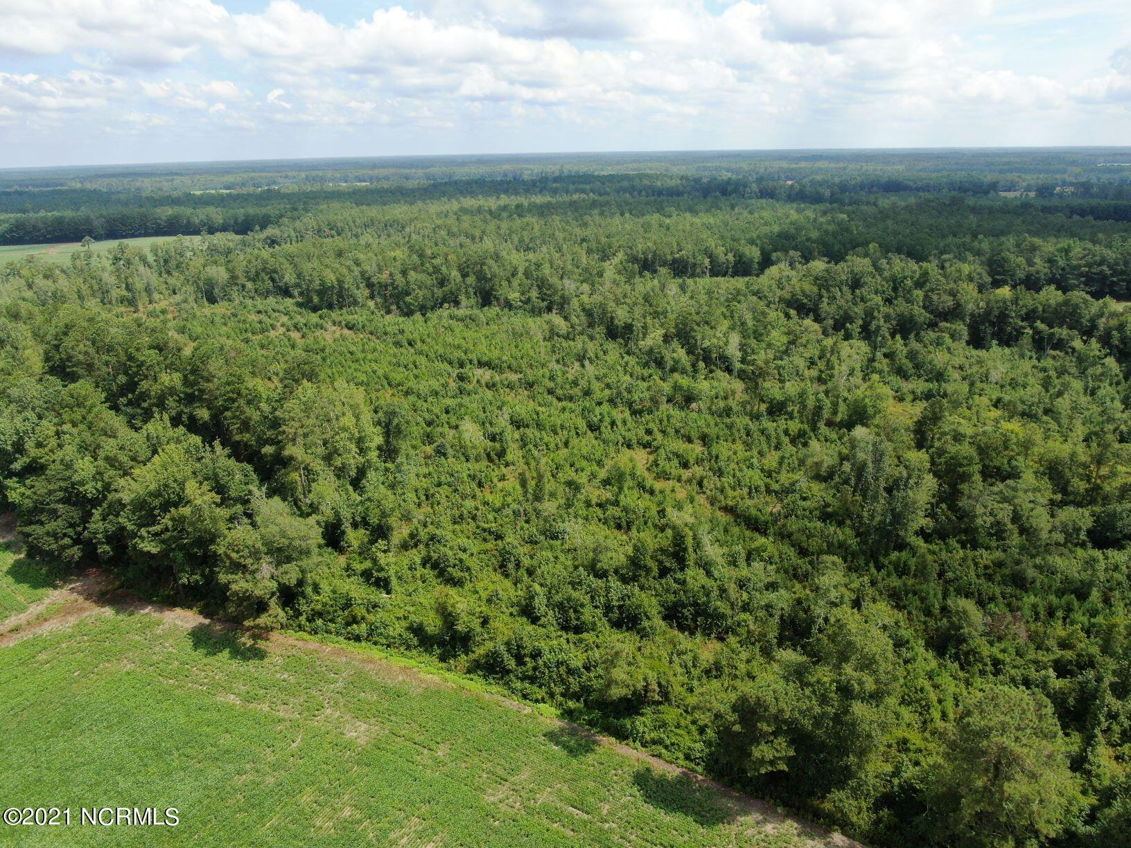 Tbd Doodle Hill Road, Cerro Gordo, North Carolina 28430, ,Undeveloped,For sale,Doodle Hill,100284545