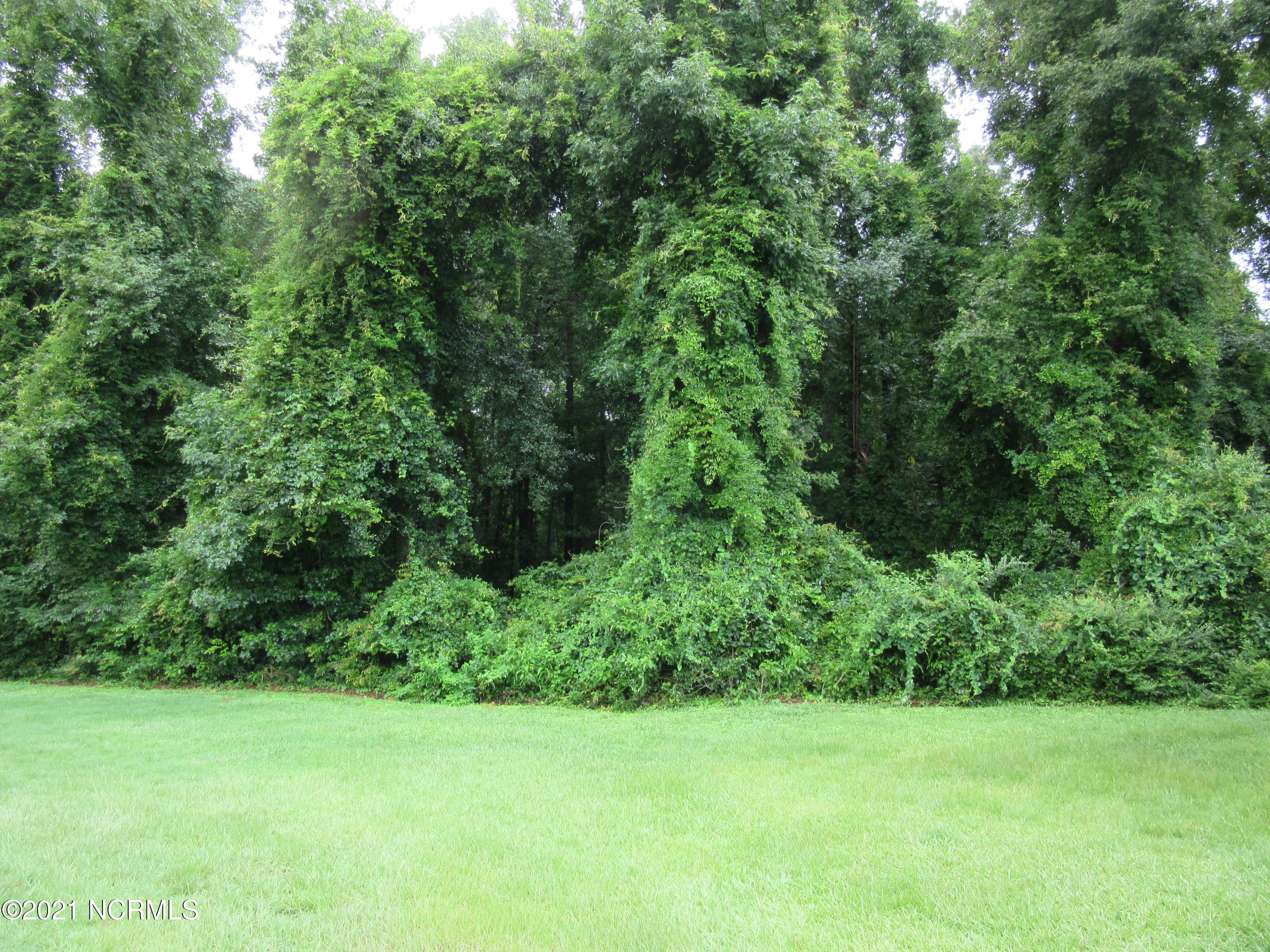 Off Army Road, Raeford, North Carolina 28376, ,Residential land,For sale,Army,100284654