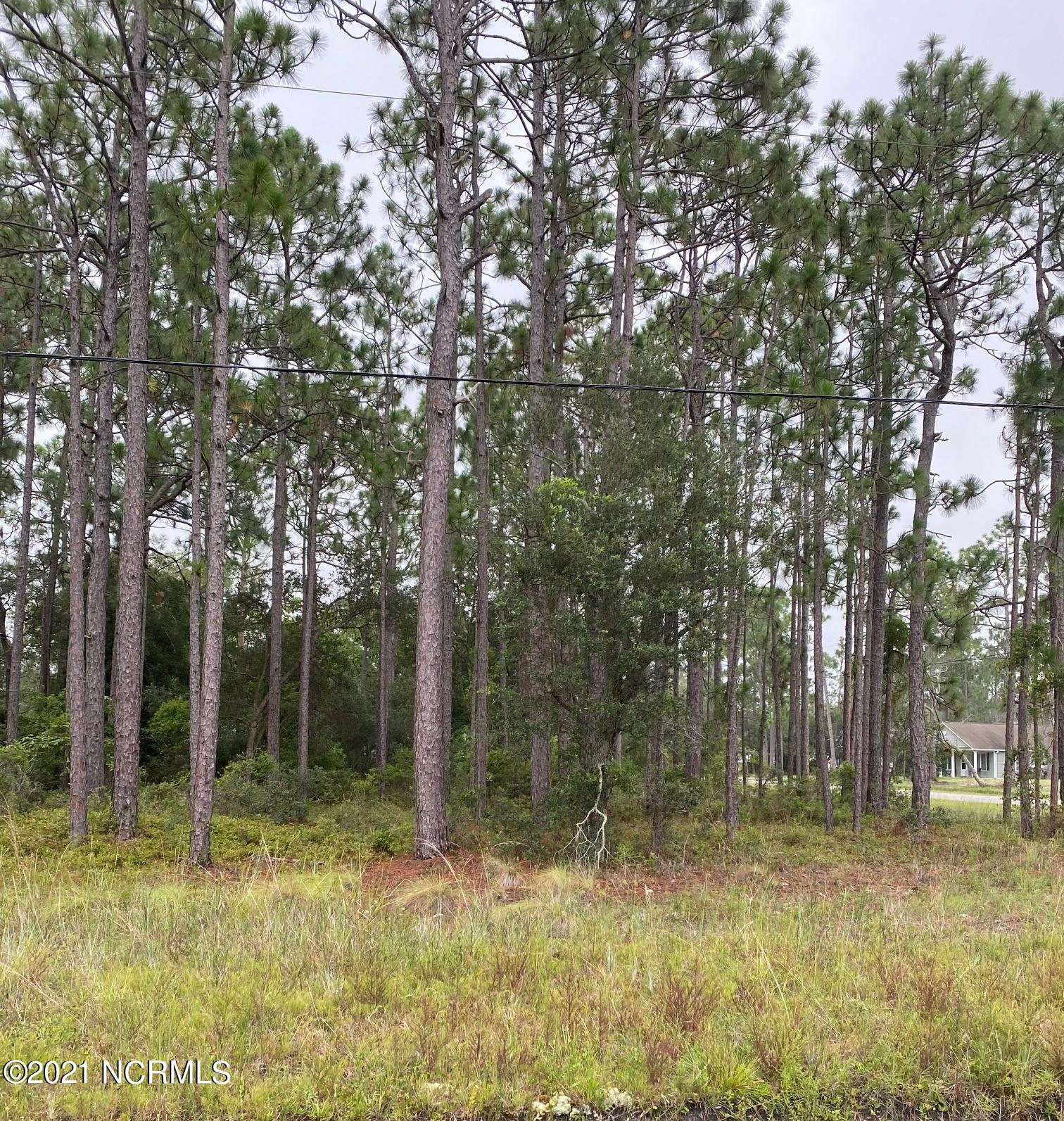 700 Fifty Lakes Drive, Boiling Spring Lakes, North Carolina 28461, ,Undeveloped,For sale,Fifty Lakes,100284733