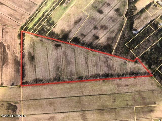 0 Topping Road, Pantego, North Carolina 27860, ,Agriculture,For sale,Topping,100285509