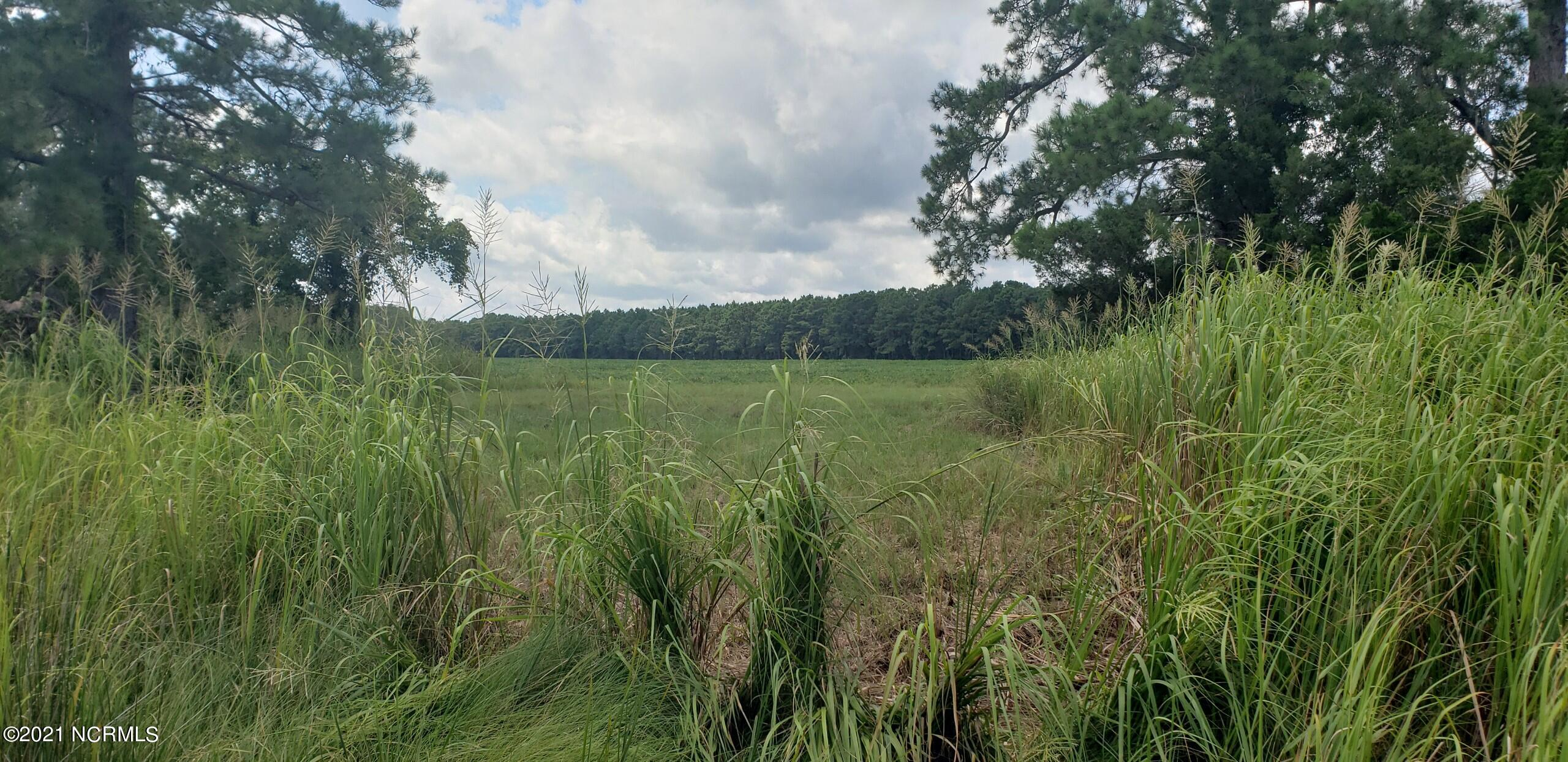 N/A State Road 1302, Oriental, North Carolina 28571, ,Undeveloped,For sale,State Road 1302,100284364