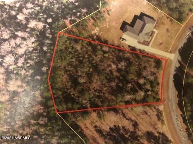 38 Eagle Trace Drive, Blounts Creek, North Carolina 27814, ,Residential land,For sale,Eagle Trace,100285465