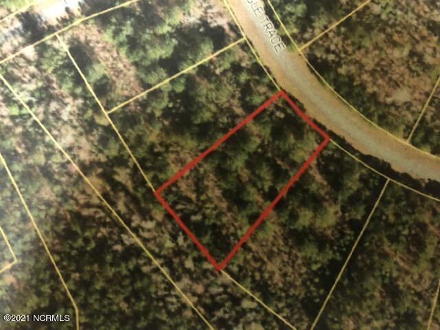 61 Eagle Trace Drive, Blounts Creek, North Carolina 27814, ,Residential land,For sale,Eagle Trace,100285471