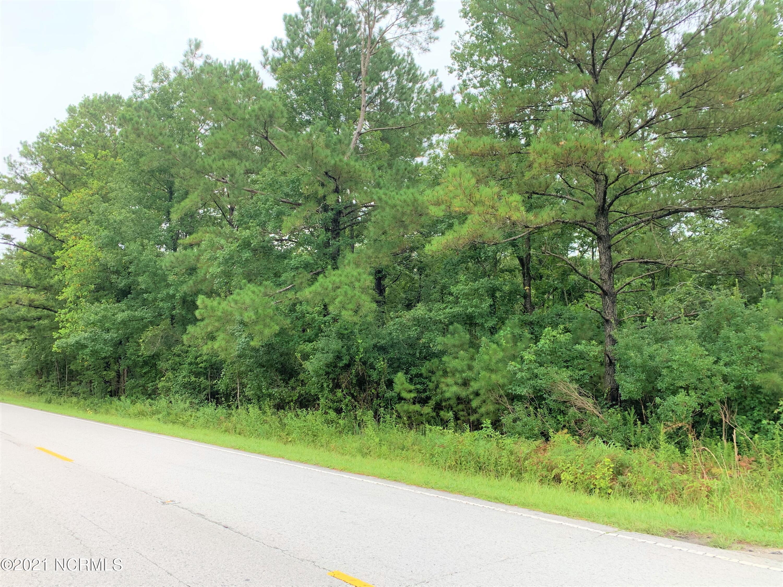 5767 Burgaw Highway, Maple Hill, North Carolina 28454, ,Residential land,For sale,Burgaw,100285589