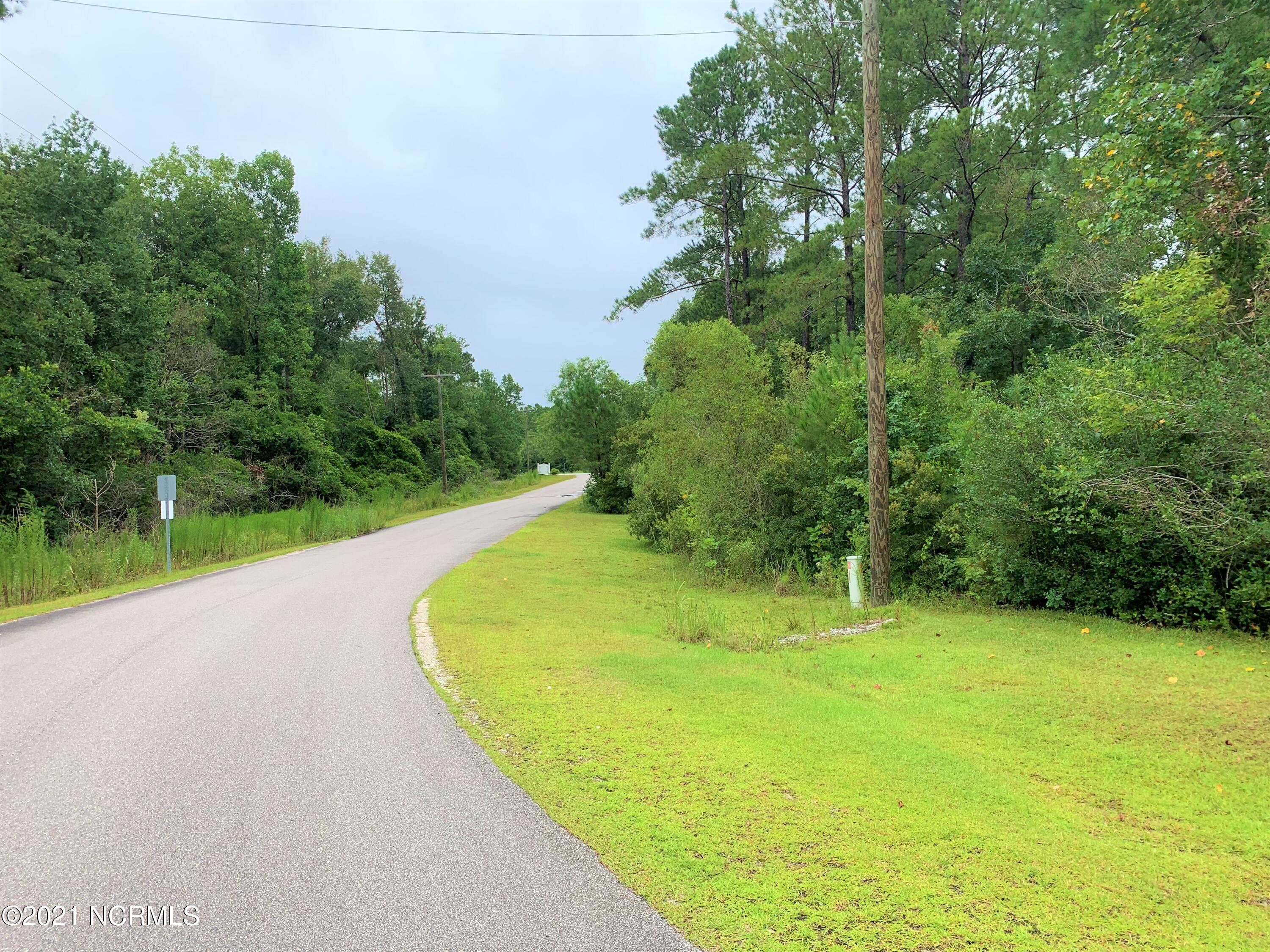 103 Chandas Place, Maple Hill, North Carolina 28454, ,Residential land,For sale,Chandas,100285583