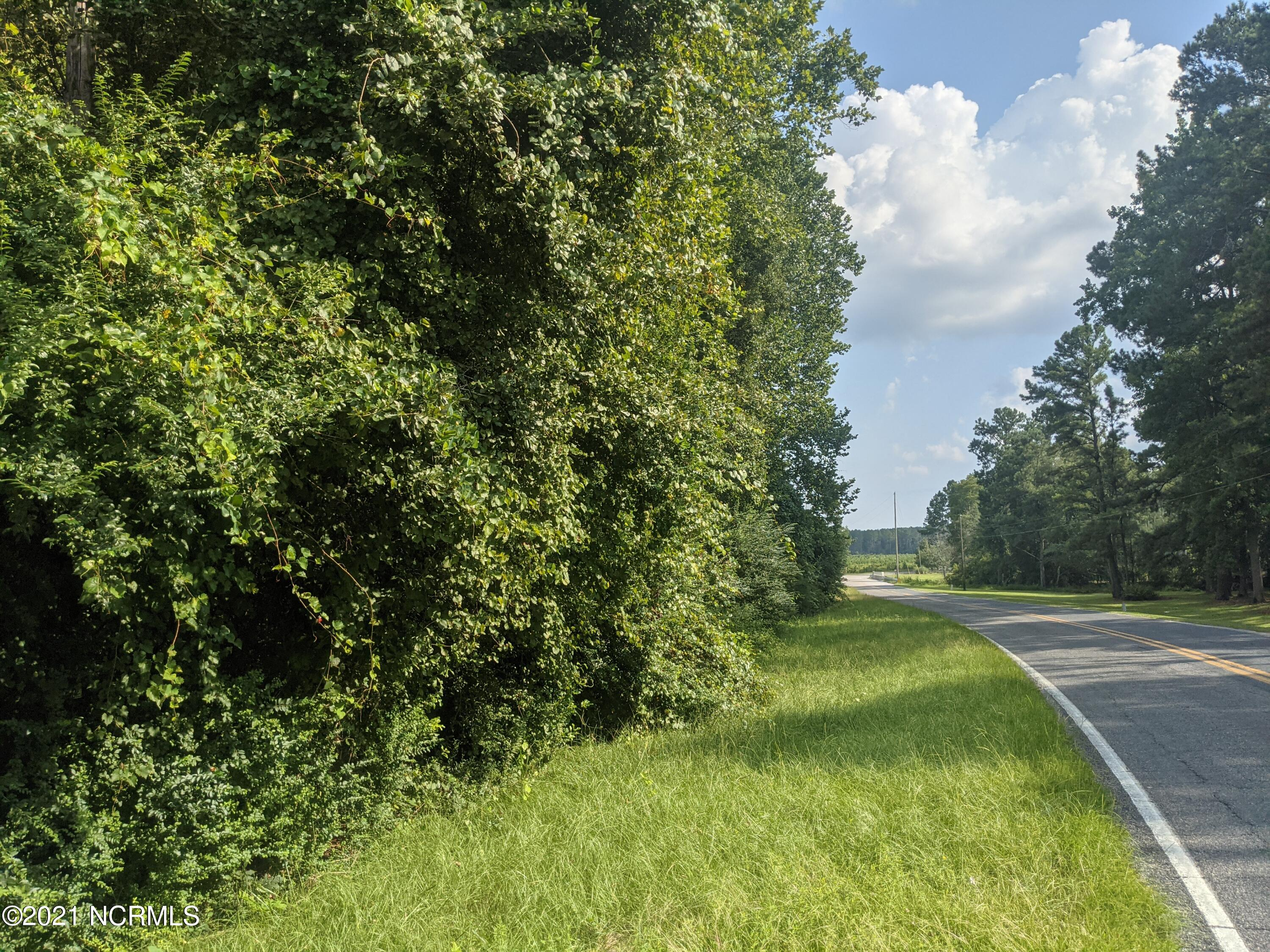 1128 Old Stage Road Road, Laurinburg, North Carolina 28352, ,Wooded,For sale,Old Stage Road,100285644