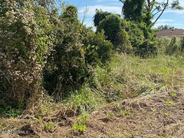 159 Lucille Lewis Drive, Marshallberg, North Carolina 28553, ,Residential land,For sale,Lucille Lewis,100285754