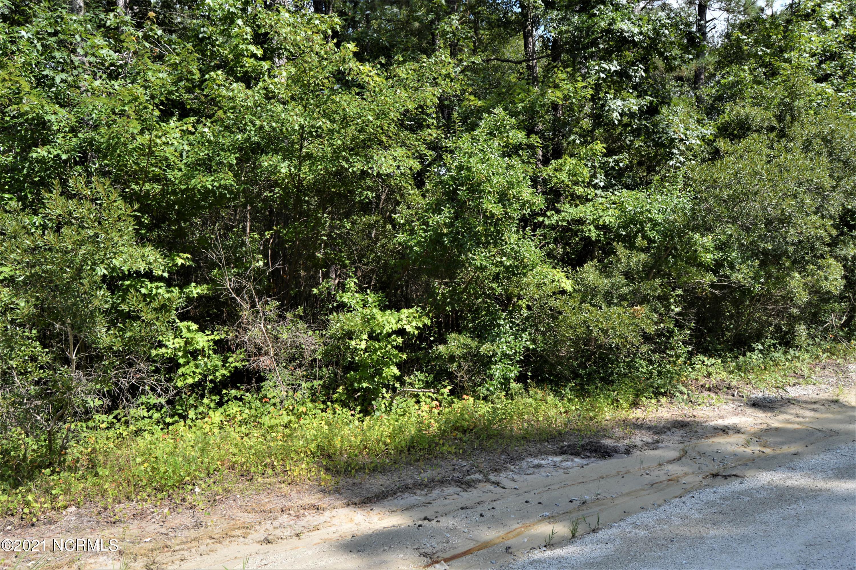 Lot 9 White Oak Drive, Burgaw, North Carolina 28425, ,Residential land,For sale,White Oak,100284994