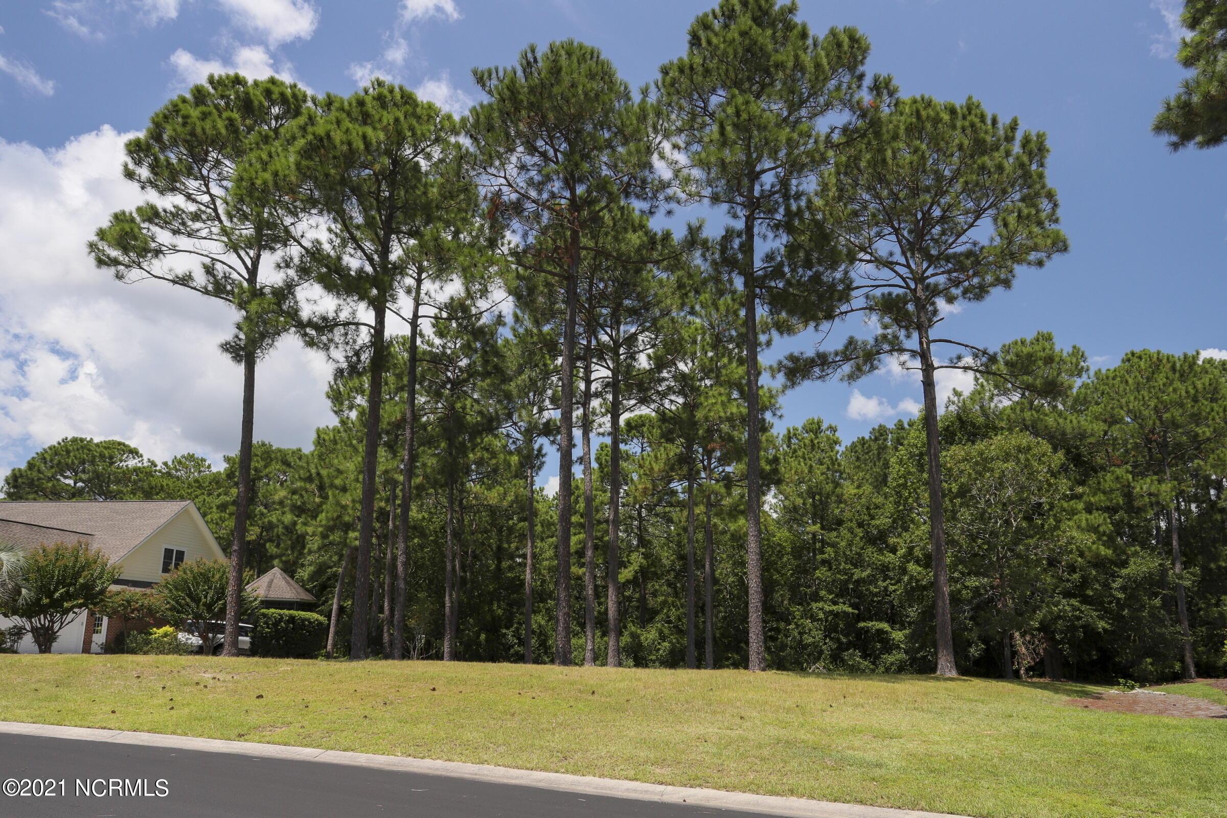 1456 Crimson Leaf Court, Bolivia, North Carolina 28422, ,Residential land,For sale,Crimson Leaf,100286064