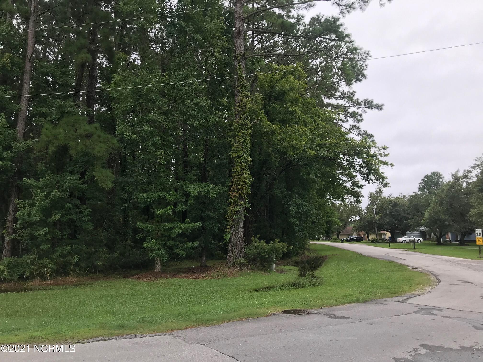 Lot 50 Gilgo Road, Oriental, North Carolina 28571, ,Residential land,For sale,Gilgo,100286101