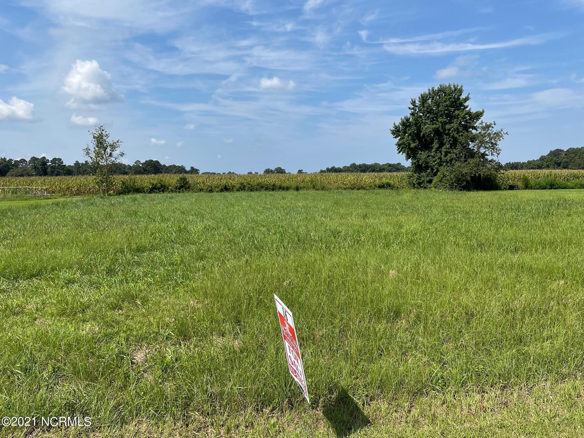 16 Cedar Lake Lane, Clinton, North Carolina 28328, ,Residential land,For sale,Cedar Lake,100286414