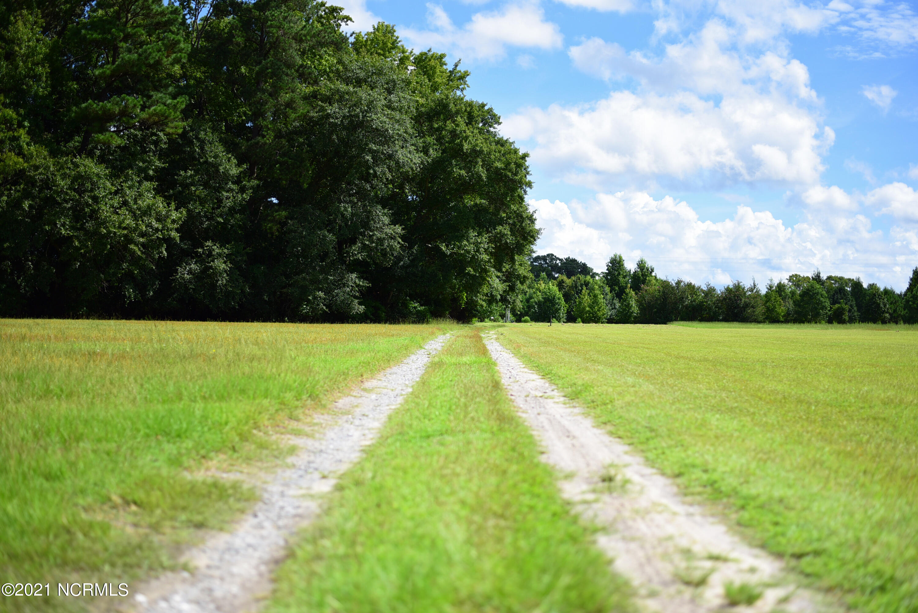 0 Windham Road, Greenville, North Carolina 27834, ,Residential land,For sale,Windham,100286348