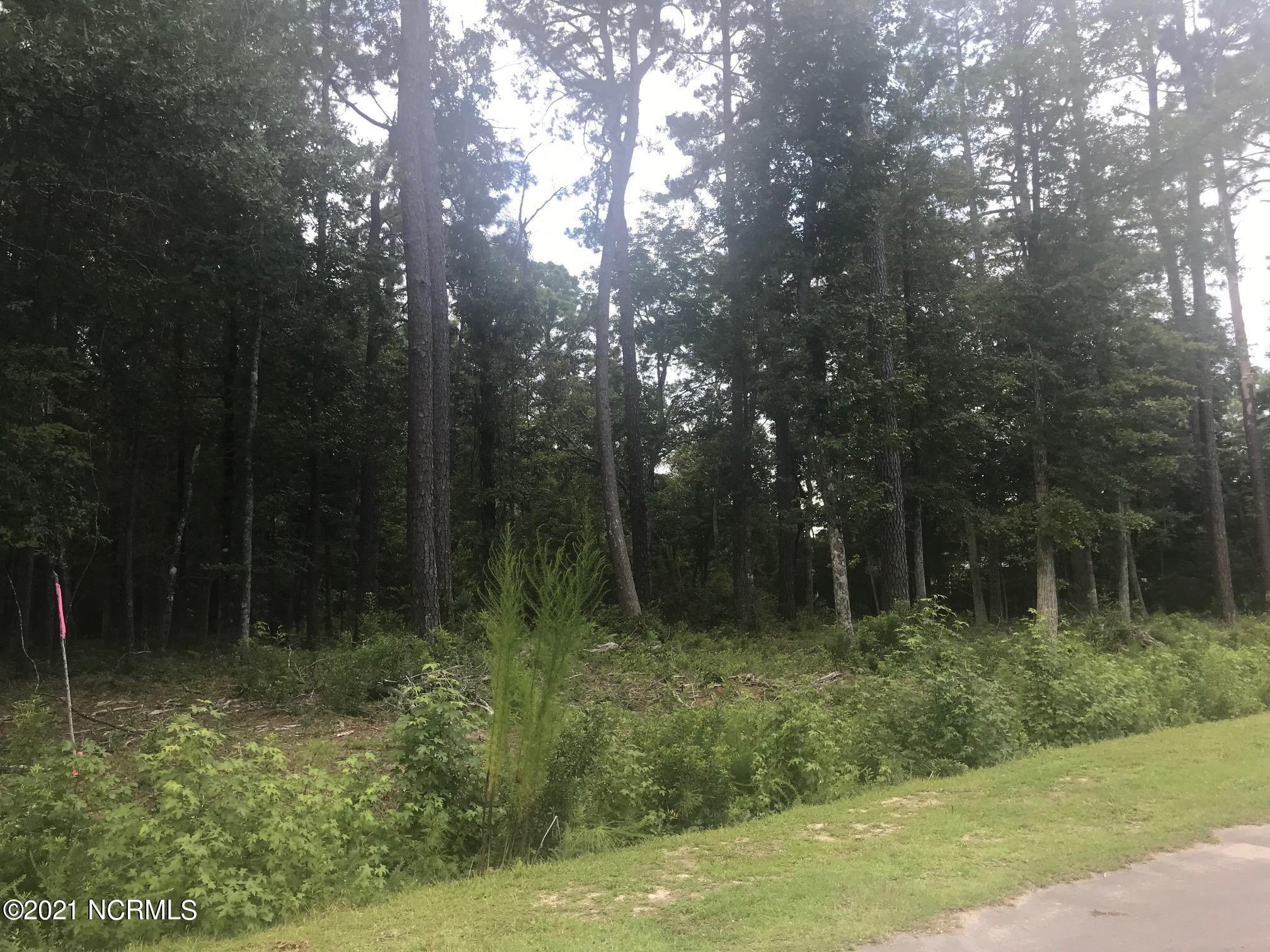 70 Ann Drive, Arapahoe, North Carolina 28510, ,Wooded,For sale,Ann,100285797