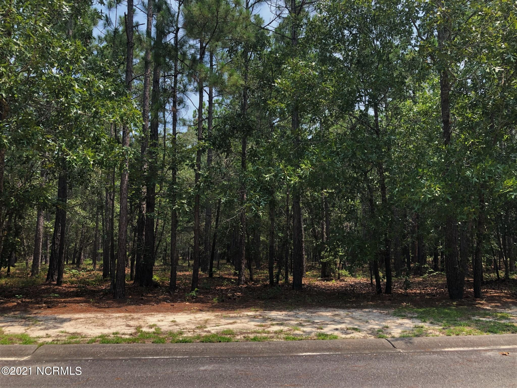 525 Estevao Lane, Bolivia, North Carolina 28422, ,Wooded,For sale,Estevao,100287675