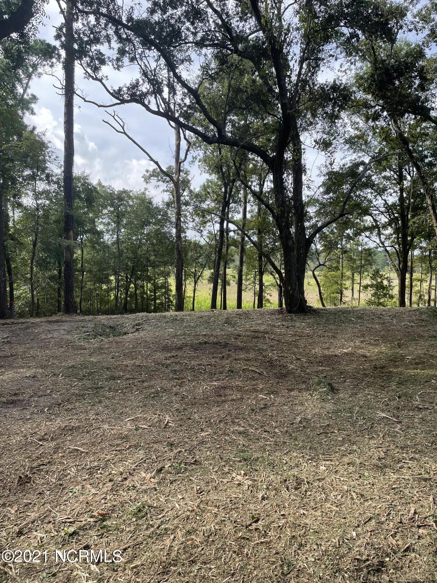 136 Brookhaven Trail, Leland, North Carolina 28451, ,Residential land,For sale,Brookhaven,100286370