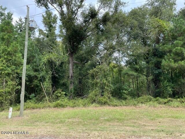 45 River Birch Road, Burgaw, North Carolina 28425, ,Wooded,For sale,River Birch,100289849