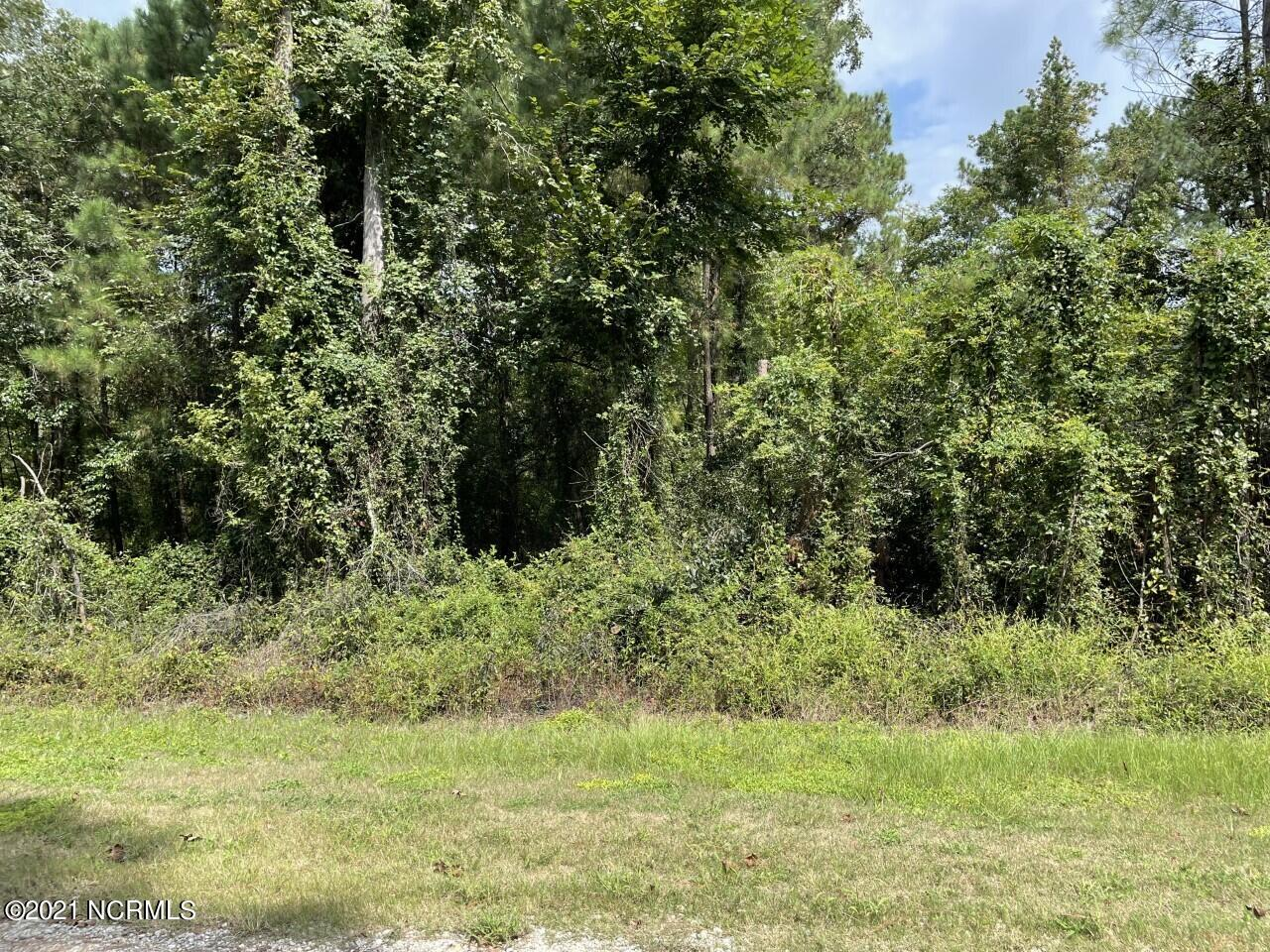 46 River Birch Road, Burgaw, North Carolina 28425, ,Wooded,For sale,River Birch,100289851