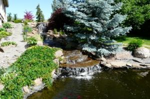 Majestic View Koi Pond 2