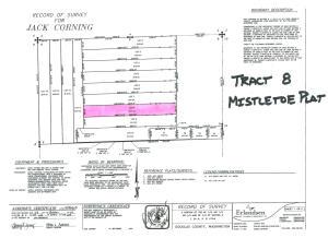 tract 8 plat map photo