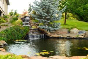 Erickson Falls an pond-E