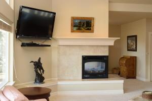 Erickson Fireplace3