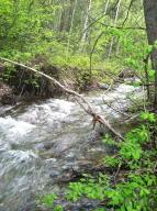 Antoine Creek