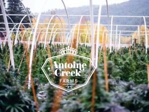 Antoine Creek Farms Introduction