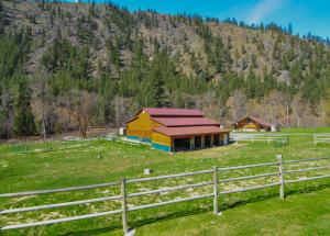 Stalls and pasture